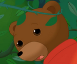 Petit Ours brun a des petits malheurs